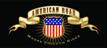 Bandiera americana della strada Immagine Stock