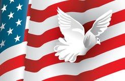 Bandiera americana e una colomba Immagini Stock