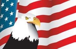 Bandiera americana ed aquila Fotografie Stock