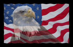 Bandiera americana ed aquila calva fotografie stock libere da diritti