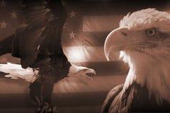 Bandiera americana ed aquile Fotografia Stock