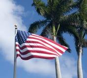 Bandiera americana, palme Fotografie Stock Libere da Diritti