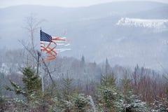 Bandiera americana stracciata che soffia nel vento di inverno, Rangeley, MAI Immagine Stock