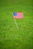 Bandiera americana su erba fotografie stock libere da diritti