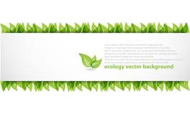 Bandiera astratta moderna di ecologia Immagine Stock