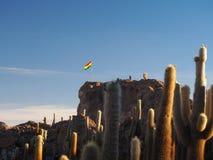 Bandiera boliviana sull'isola del cactus in Salar de Uyuni, Bolivia immagini stock