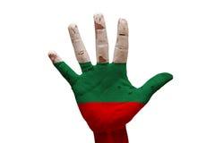 bandiera Bulgaria della palma Immagine Stock