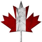 Bandiera canadese - foglia di legno illustrazione vettoriale