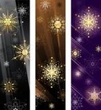 Bandiera con i fiocchi di neve dorati Fotografia Stock