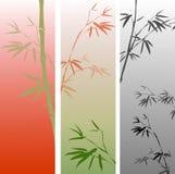 Bandiera con le filiali di bambù Fotografie Stock