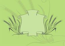 Bandiera con verde del frumento Immagini Stock