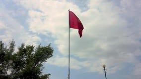 Bandiera d'ondeggiamento del Kirghizistan stock footage