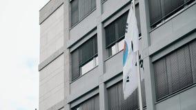 Bandiera d'ondeggiamento della Corea del Sud stock footage