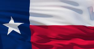 Bandiera d'ondeggiamento dello stato del Texas, Stati Uniti d'America illustrazione 3D illustrazione vettoriale