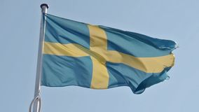Bandiera d'ondeggiamento dello svedese video d archivio