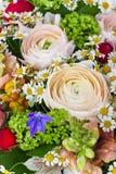 Bandiera dei fiori Background Fotografie Stock Libere da Diritti