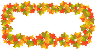 Bandiera dei fogli di autunno Immagine Stock