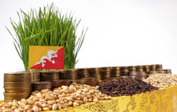 Bandiera del Bhutan che ondeggia con la pila di monete dei soldi ed i mucchi di grano Fotografia Stock Libera da Diritti