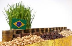 Bandiera del Brasile che ondeggia con la pila di monete dei soldi ed i mucchi dei semi Fotografia Stock Libera da Diritti
