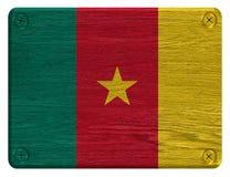 Bandiera del Camerun fotografia stock libera da diritti