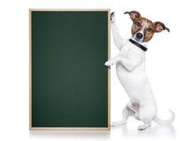 Bandiera del cane Fotografia Stock
