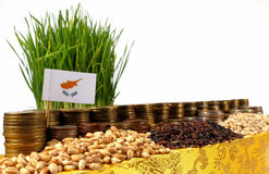 Bandiera del Cipro che ondeggia con la pila di monete dei soldi ed i mucchi di grano Fotografia Stock Libera da Diritti