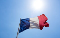 Bandiera del francese Immagine Stock