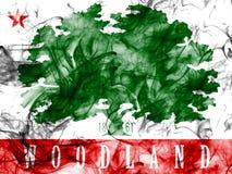 Bandiera del fumo della città del terreno boscoso, stato di California, Stati Uniti di Ame Immagini Stock Libere da Diritti