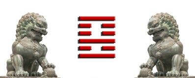 Bandiera del leone della Cina fotografia stock libera da diritti