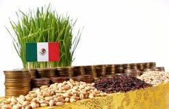 Bandiera del Messico che ondeggia con la pila di monete dei soldi ed i mucchi di grano Fotografia Stock Libera da Diritti