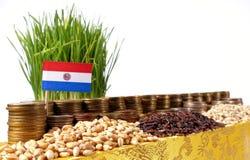 Bandiera del Paraguay che ondeggia con la pila di monete dei soldi ed i mucchi di grano Fotografie Stock Libere da Diritti