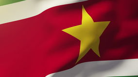 Bandiera del Surinam che ondeggia nel vento Sole di ciclaggio video d archivio