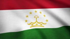 Bandiera del Tagikistan che ondeggia nel vento Fondo con struttura approssimativa del tessuto Animazione d'ondeggiamento della ba video d archivio