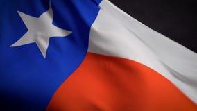 Bandiera del Texas che ondeggia nel vento sulla festa dell'indipendenza in America stock footage