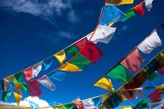 Bandiera del Tibet Fotografia Stock Libera da Diritti