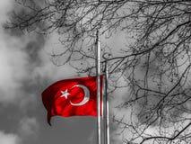 Bandiera del turco Immagine Stock