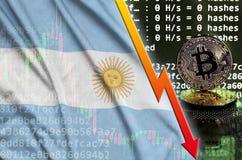 Bandiera dell'Argentina e freccia rossa di caduta sullo schermo estraente del bitcoin e su due bitcoins dorati fisici illustrazione di stock