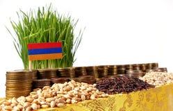 Bandiera dell'Armenia che ondeggia con la pila di monete dei soldi ed i mucchi di grano Immagini Stock Libere da Diritti