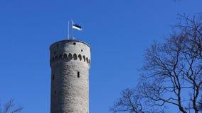 Bandiera dell'Estonia sulla vecchia torre storica massiccia a Tallinn fotografia stock