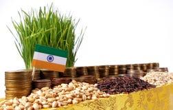 Bandiera dell'India che ondeggia con la pila di monete dei soldi ed i mucchi di grano Fotografie Stock