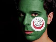 Bandiera dell'organizzazione di cooperazione islamica immagine stock libera da diritti