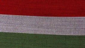 Bandiera dell'Ungheria illustrazione vettoriale