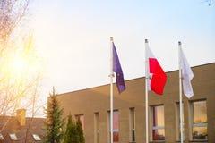 Bandiera dell'Unione Europea della Polonia e del bianco Immagine Stock
