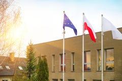 Bandiera dell'Unione Europea della Polonia e del bianco Immagine Stock Libera da Diritti