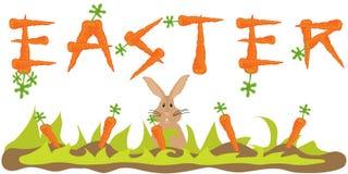 Bandiera della carota di Pasqua con il coniglietto di pasqua Fotografie Stock