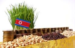 Bandiera della Corea del Nord che ondeggia con la pila di monete dei soldi ed i mucchi di grano Immagini Stock