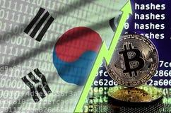 Bandiera della Corea del Sud e freccia verde aumentante sullo schermo estraente del bitcoin e su due bitcoins dorati fisici illustrazione vettoriale