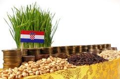 Bandiera della Croazia che ondeggia con la pila di monete dei soldi ed i mucchi di grano Fotografia Stock