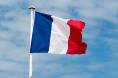 Bandiera della Francia sull'albero e contro cielo blu immagine stock libera da diritti