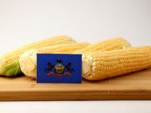 Bandiera della Pensilvania su un pannello di legno con cereale isolato su un briciolo Immagine Stock